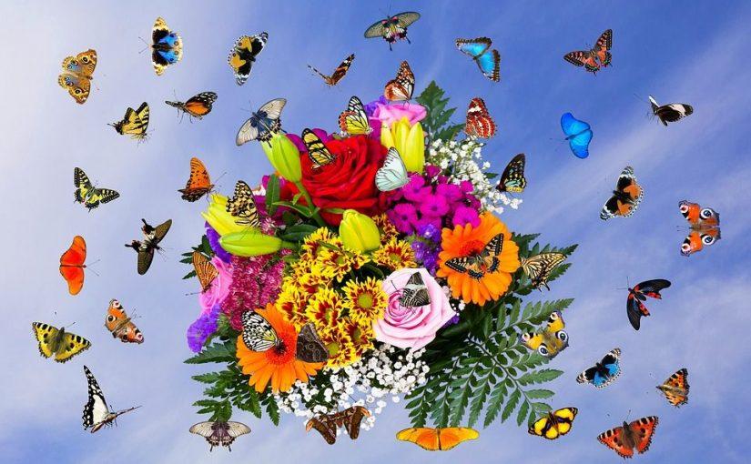 Schmetterlinge im Bauch – Wenn das kribbeln los geht